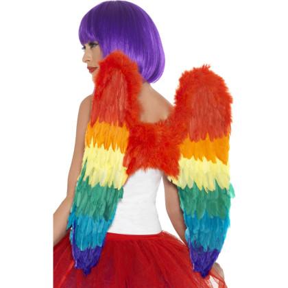Flügel bunt Regenbogen Farben