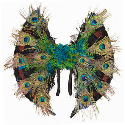 Flügel Pfau Paradiesvogel mit Pfauenfedern