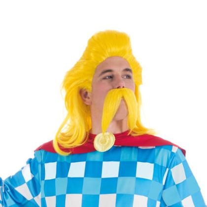 Perücke und Bart für Troubadix Kostüm