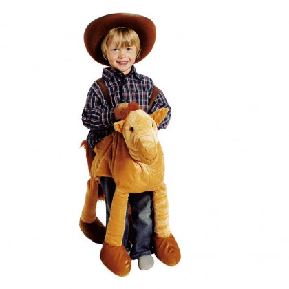 Junge mit Cowboy Hut und Pferde Kostüm