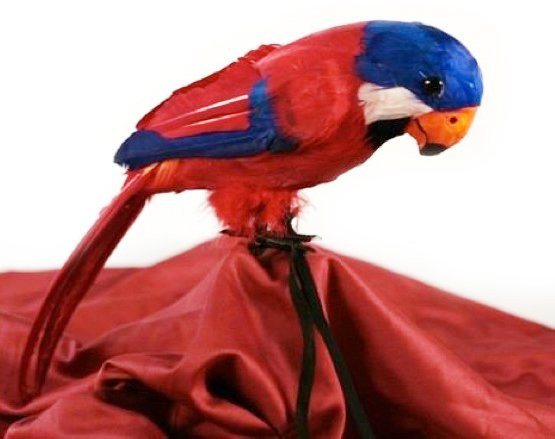 Partyartikel Dekoration Karneval Fasching Roter Papagei mit Federn NEU