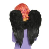 Schwarze Flügel 50 x 60