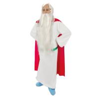 Miraculix Kostüm lizenziert