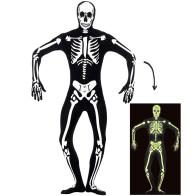 Skelett Morph