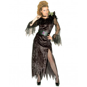 tolles Kostüm für die schwarze Witwe Pannesamt mit Federn und Spitze