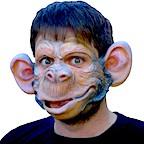 Bild Kategorie Halloween Masken
